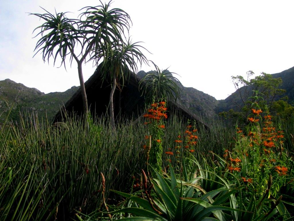 Kirstenbosch, South Africa, April 2013