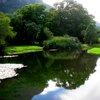 Kirstenbosch 39