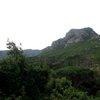 Kirstenbosch 49.JPG