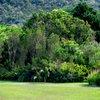 Kirstenbosch 40