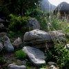 Kirstenbosch 31