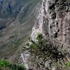 Table Mountain National Park 37