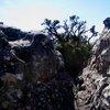Table Mountain National Park 31