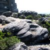 Table Mountain National Park 32