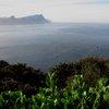 Cape Of Good Hope 20