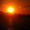 Zambezi 12