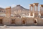 Палмира DSC_0465