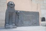 Дамаск DSC 9910