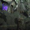St. Michael's cave 22