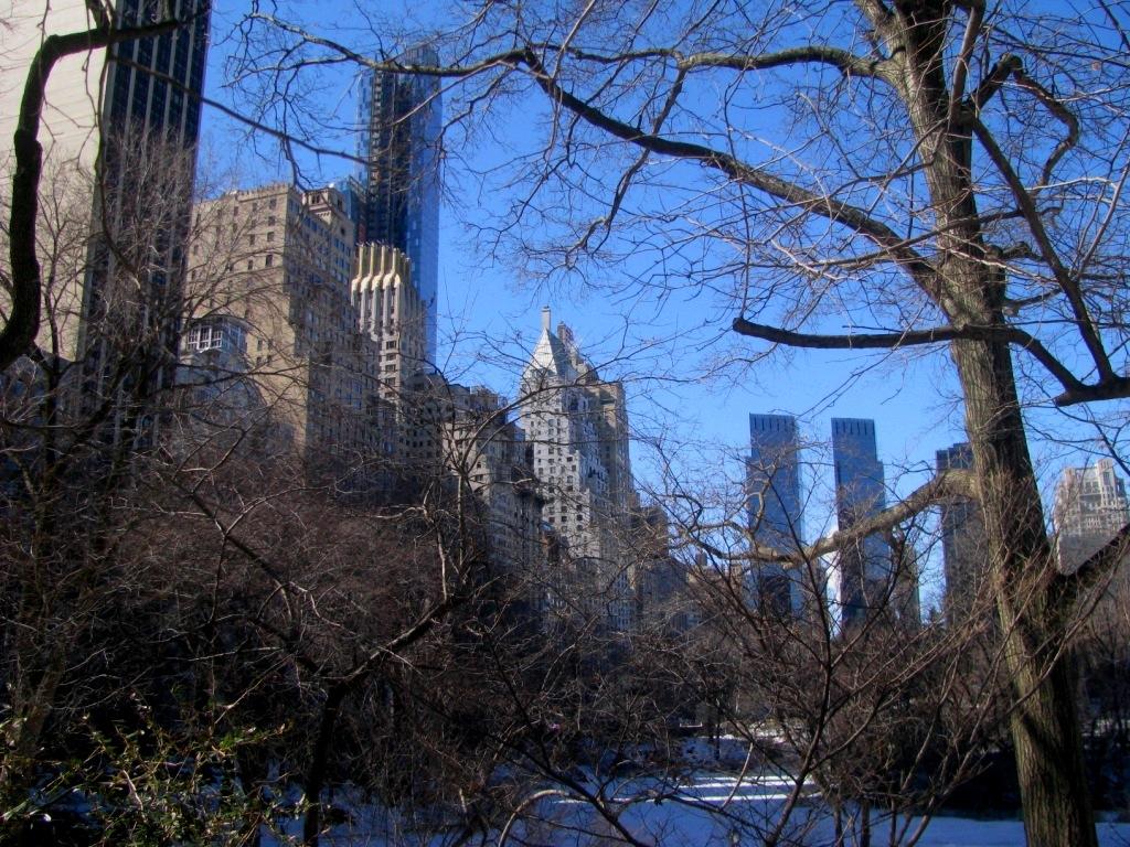 New York, USA, February 2014