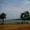 Lake Victoria 37