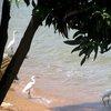 Lake Victoria 26