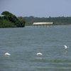 Lake Victoria 30