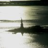NYC 448.JPG