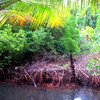 Nihco marine park & resort 50.JPG