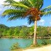 Nihco marine park & resort 31