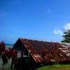 Nan Madol 36