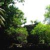 Nan Madol 18