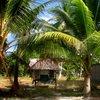 South Tarawa 50.JPG