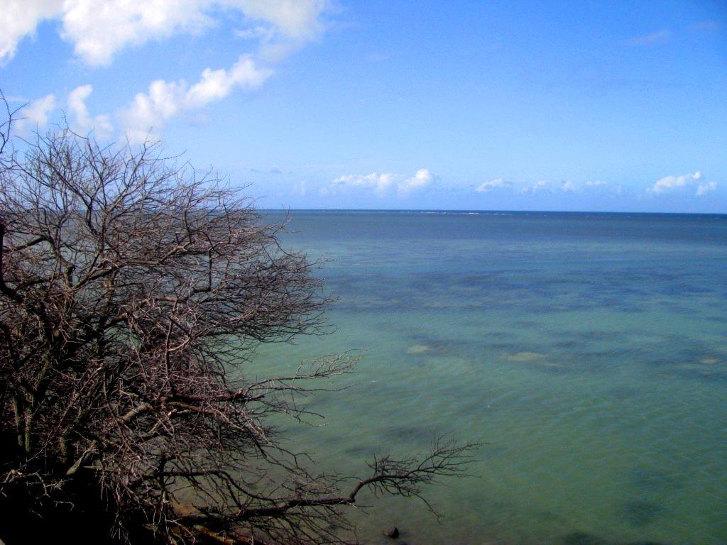 Rodrigues Island, Mauritius, January 2017