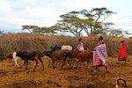 Masai village, Selenkay Conservancy, Kenya