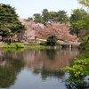 Tokyo - Shinjuku-goen Garden (58).JPG