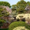 Tokyo - Shinjuku-goen Garden (50).JPG