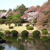 Tokyo - Shinjuku-goen Garden (59).JPG