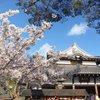 012   Kyoto (352)   Kiyomizu dera Temple