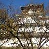 09    Osaka (220)   Osaka Castle