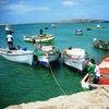 Рибарите в Сал Рей