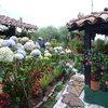 """Посещение на фермата за цветя """"Herencia Silletera"""" в Санта Елена, Меделин."""