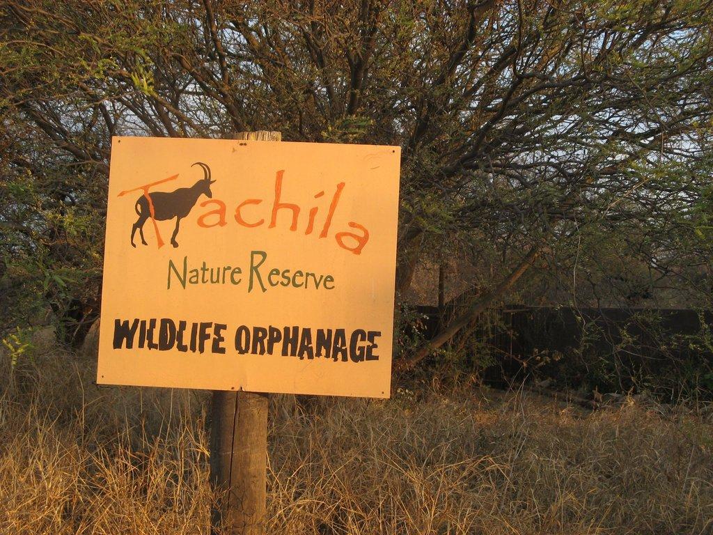 Ботсвана - резервати Тачила и Кама Райно
