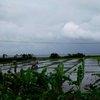 Bali & Indian ocean 49.JPG