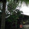 Bali & Indian ocean 50.JPG