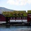 Torshavn 36