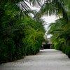 Furanafushi Island 41