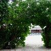 Furanafushi Island 42